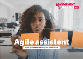agile assistant