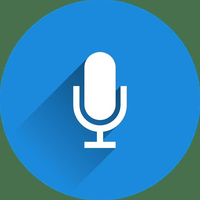 Google Microfoon